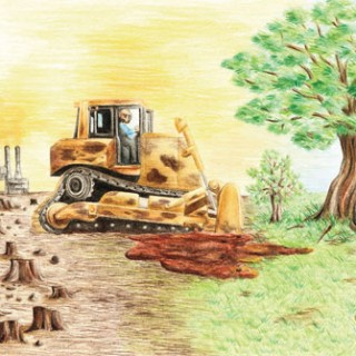 afforestation-fund-bill