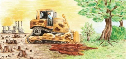 afforestation-fund-bill