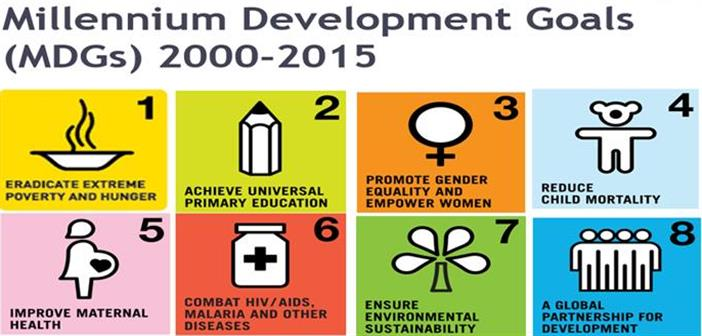 article india s millennium development goals