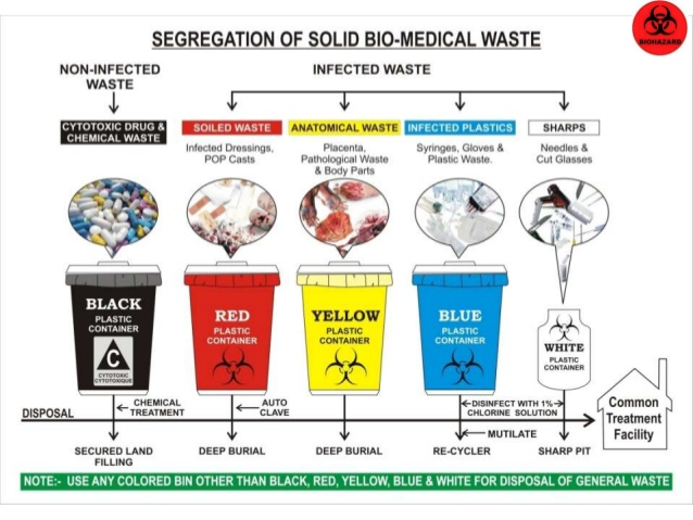 The nature of biomedical waste environmental sciences essay